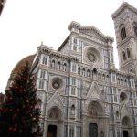 Albero di Natale!大聖堂のクリスマスツリーが点灯されました!