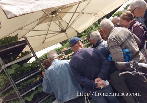 フィレンツェ、カッシーネの市場