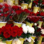 バレンタインデーのバラ