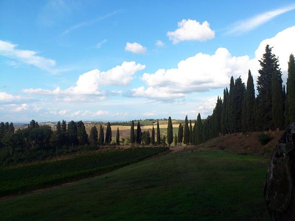 ワイン産地のモンタルチーノ