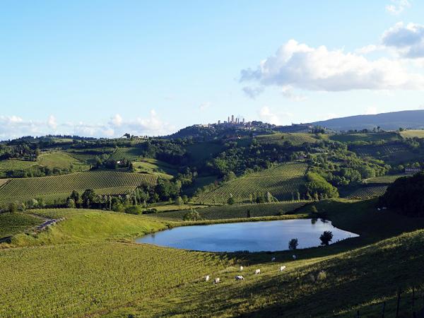 サンジミニャーノを望む丘