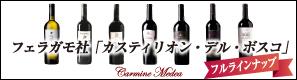 蔵出しイタリアワイン直輸入