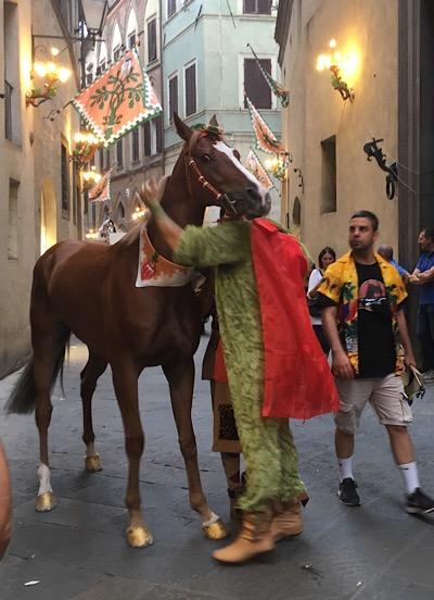 シエナ、パリオの馬