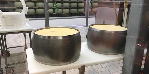 FICOチーズ工場
