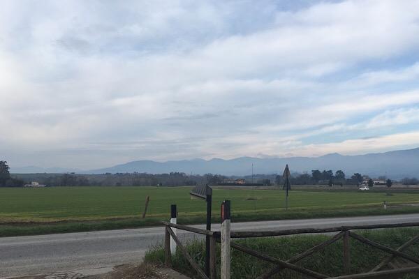 ムジェッロの田園風景